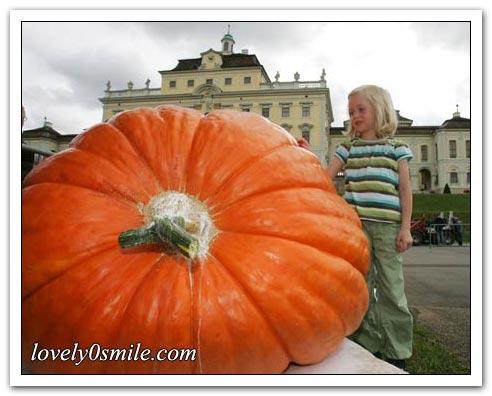 صور حول العالم لشهر أكتوبر (1)