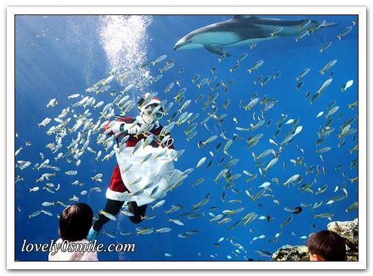 صور حول العالم لشهر نوفمبر (3)