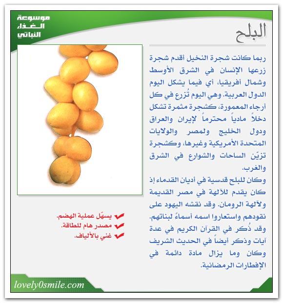 هل تريد معرفة فوائد الخضر fo-007.jpg