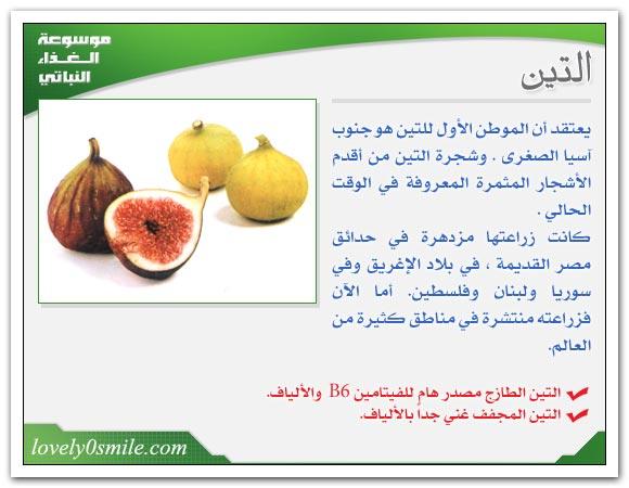 ثمار ومأكولات خريفية للتخلص دهون fo-008.jpg