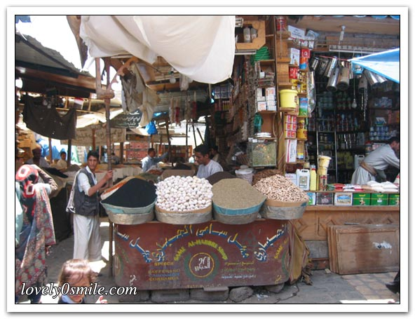 دليل اليمن صور-تاريخ- سياحة