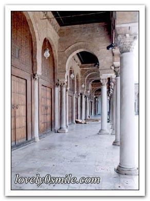 جامع الزيتونة I-zitonh-10