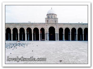 جامع الزيتونة I-zitonh-19