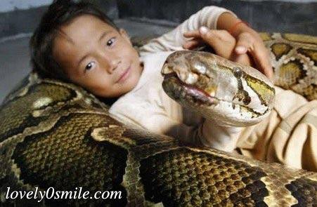 الصبي وصديقته شمرون - صور