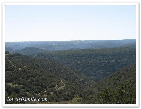 صور الجبل الأخضر... 001.jpg