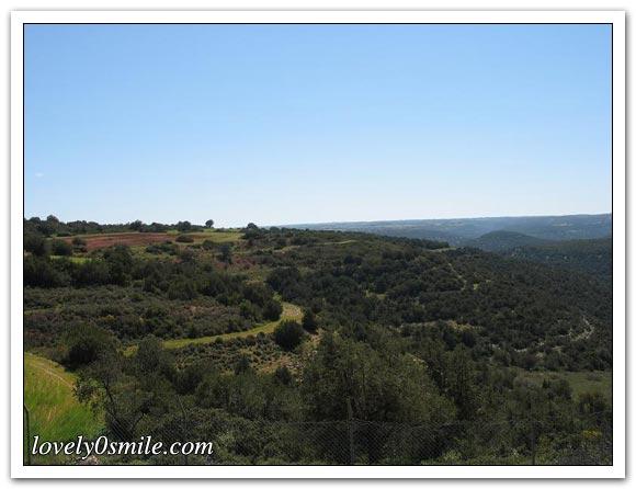 صور الجبل الأخضر... 002.jpg