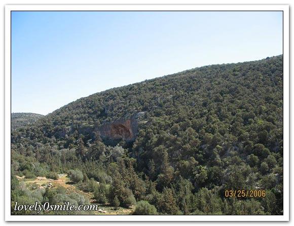 صور للجبل الأخضر والطبيعة في ليبيا