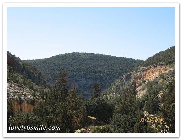 صور الجبل الأخضر... 007.jpg