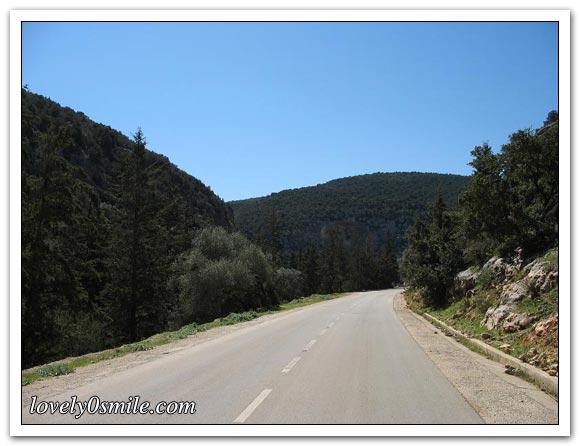 صور الجبل الأخضر... 008.jpg