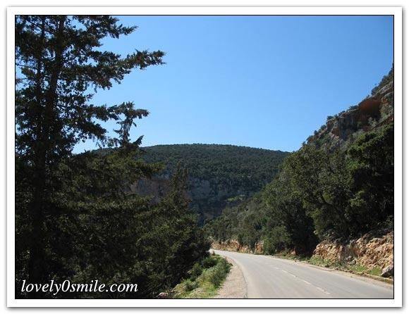 صور الجبل الأخضر... 009.jpg
