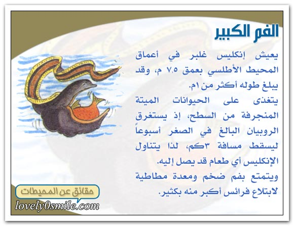 معلومات عجيبة عن عالم البحار Oc-09-01