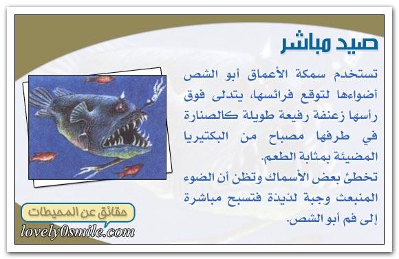 معلومات عجيبة عن عالم البحار Oc-09-03