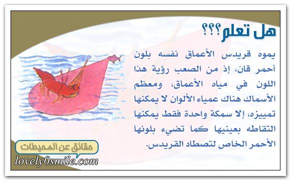 معلومات عجيبة عن عالم البحار Oc-09-05