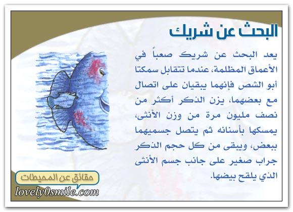 معلومات عجيبة عن عالم البحار Oc-09-06