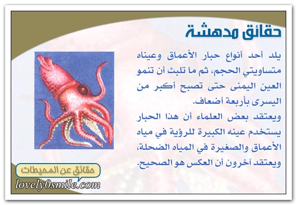 معلومات عجيبه عن عالم البحار و المحيطات oc-09-07.jpg
