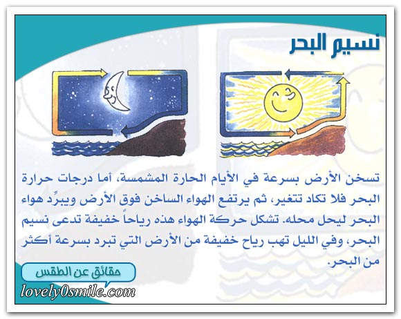 تقرير علمي مصور الرياح we-08-08.jpg