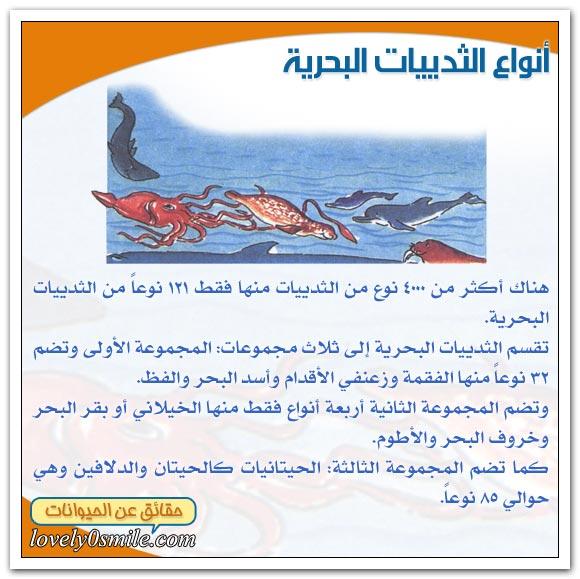 الثدييات البحرية