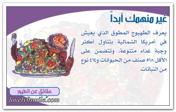 الغذاء والتغذية