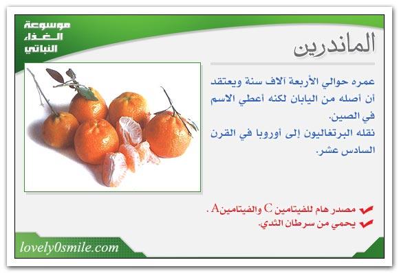نباتات عامة Fo-022