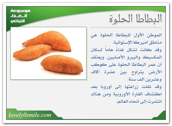 البطاطا الحلوة