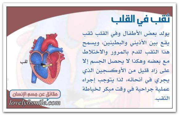 معلومات على قلبك hu-04-02.jpg