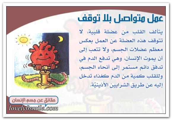 معلومات على قلبك hu-04-07.jpg