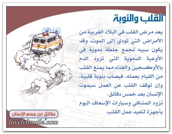 معلومات على قلبك hu-04-08.jpg