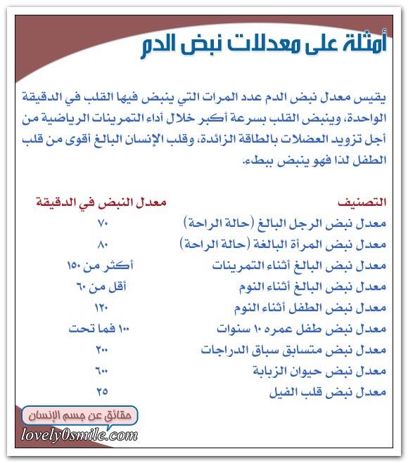 معلومات على قلبك hu-04-11.jpg