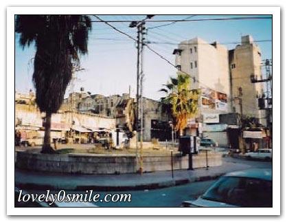 جولة في مدن فلسطين - صور