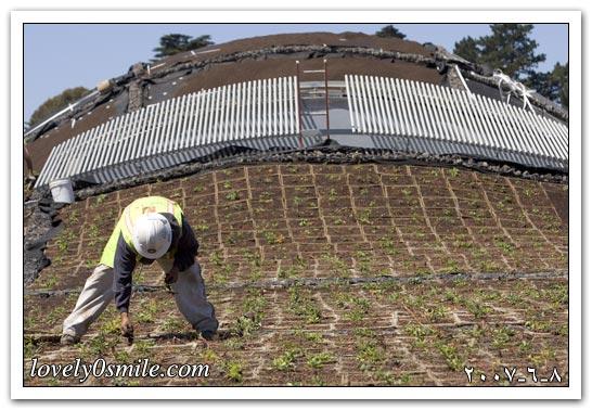العالم اليوم 8-6-2007 / صور