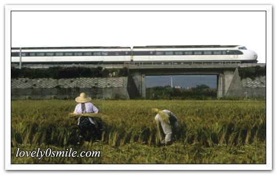 وسائل النقل في آفاق متجددة - صور