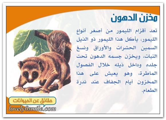 حيوانات العالم البعيد