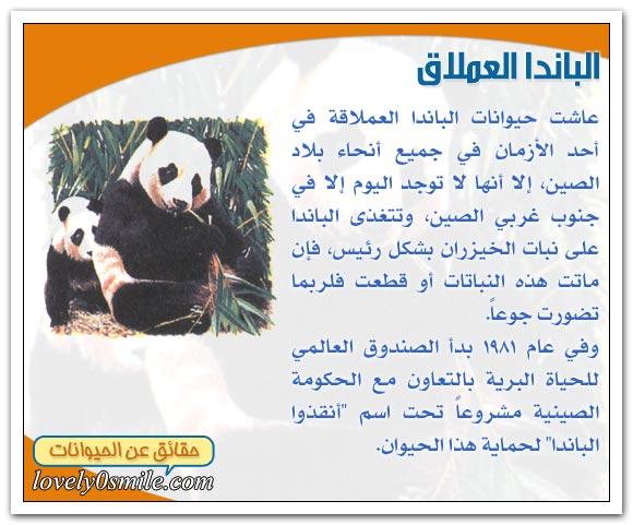 الثدييات في خطر