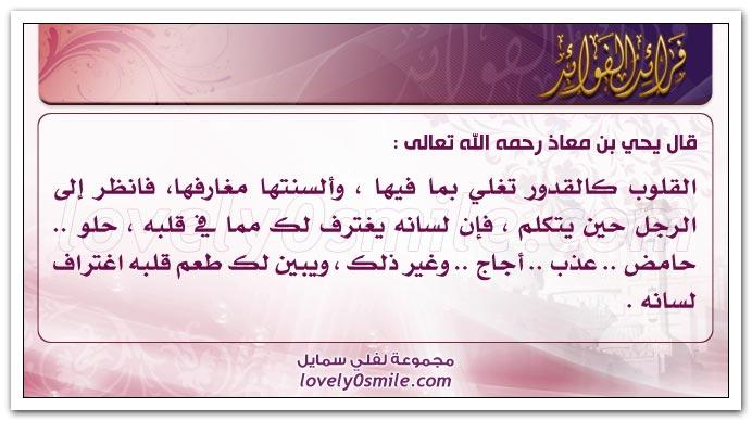 السعادة الشقاوة fraed-008.jpg