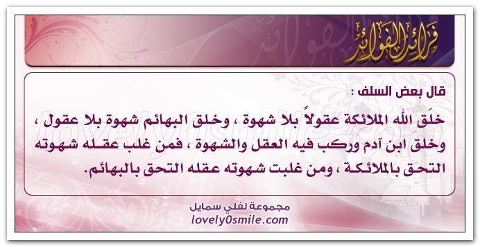 السعادة الشقاوة fraed-010.jpg