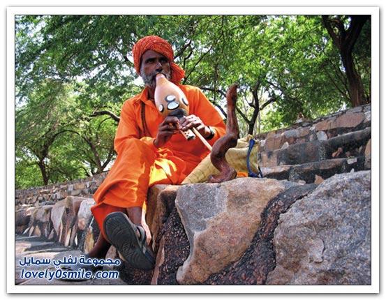 الهند معلومات وصور 010.jpg