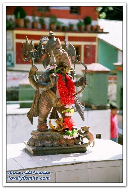 الهند معلومات وصور 014.jpg