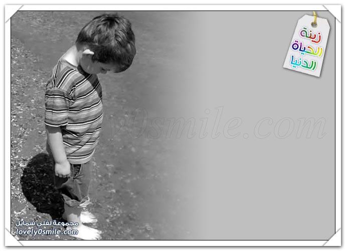 صور - زينة الحياة الدنيا 16