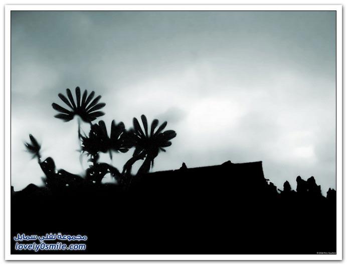 صور منوعة 130