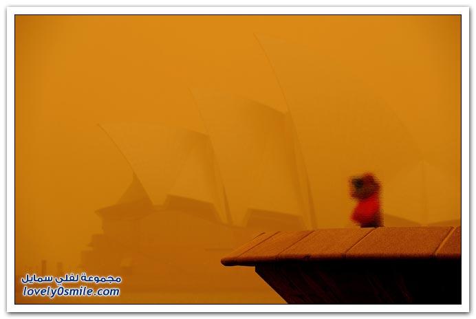 بحبها يا ناس , طفل حافظ للقرآن الكريم فيديو + صور العاصفة الترابية في أستراليا