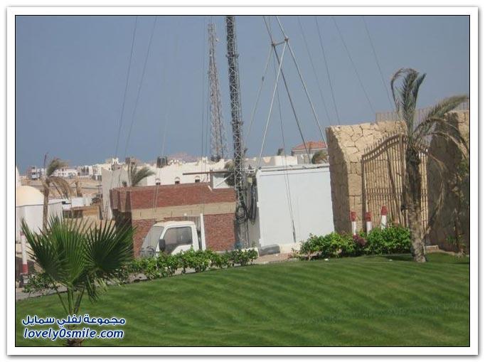 صور: برج لتقوية شبكة الجوال ولكن على شكل نخلة