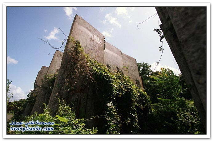 صور بعد 20 عاما من سقوط جدار برلين