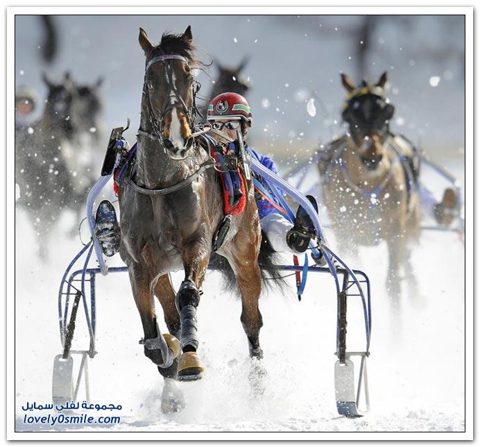قليل من صور الرياضة Sport-047