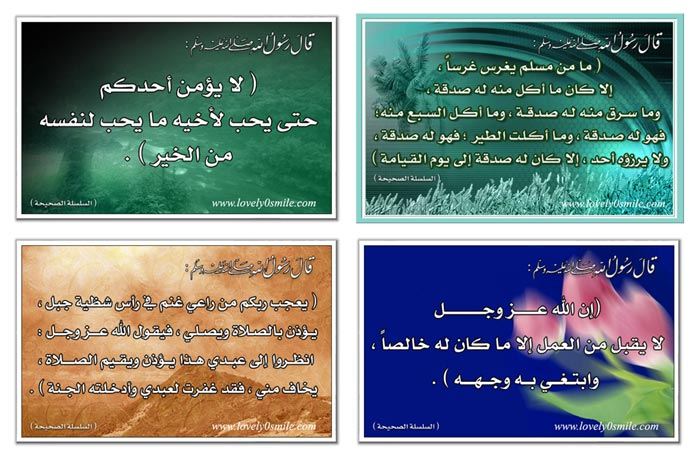 والله لن تندم 6