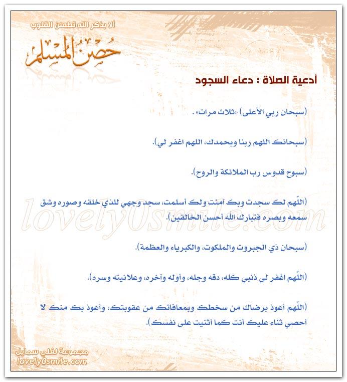 أدعية الصلاة: دعاء السجود + دعاء الجلسة بين السجدتين