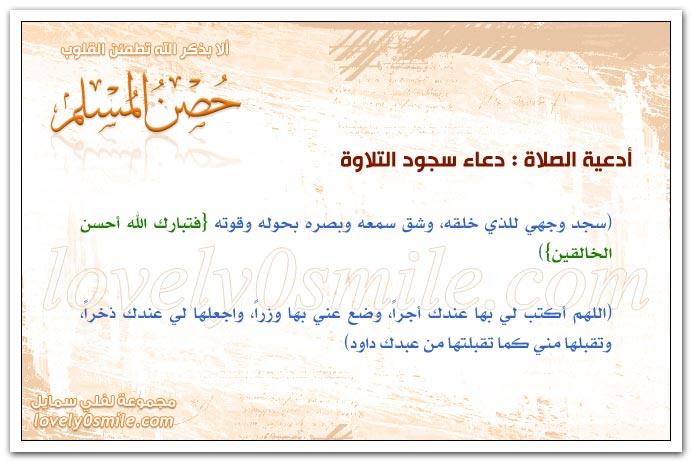 أدعية الصلاة: دعاء سجود التلاوة + التشهد + الصلاة على النبي عليه السلام بعد التشهد