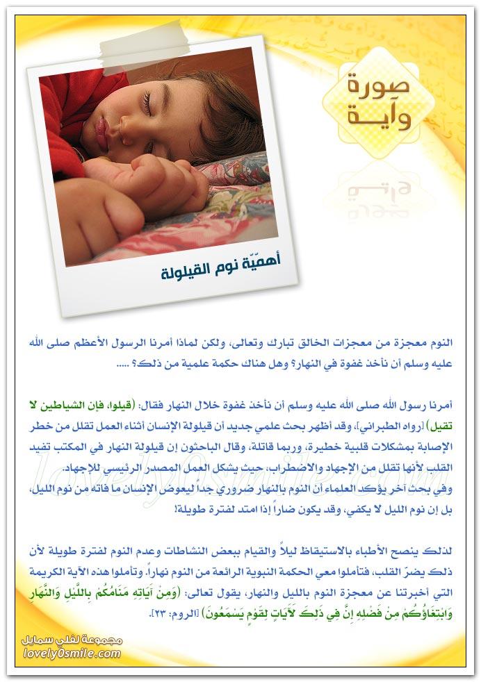 أهمية نوم القيلولة + الدباء لعلاج الوزن الزائد