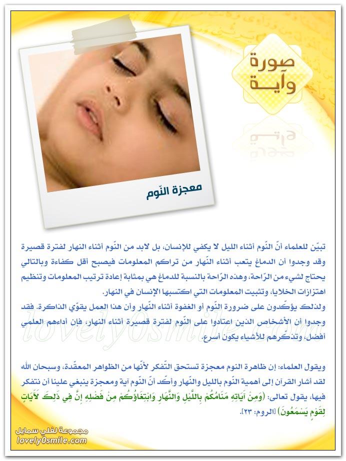 إحكام الرقم 7 في القرآن + معجزة النوم