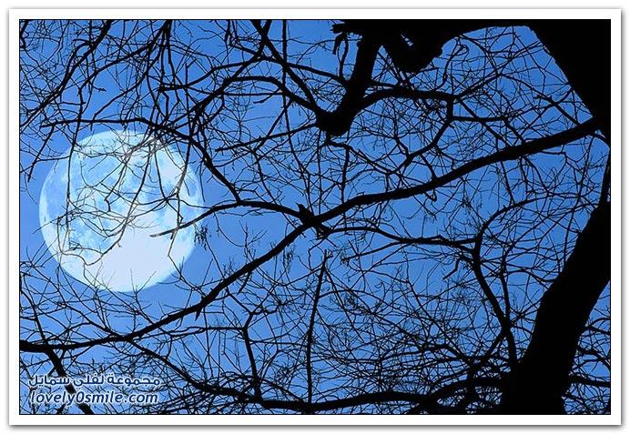 صور القمر في الليل والنهار
