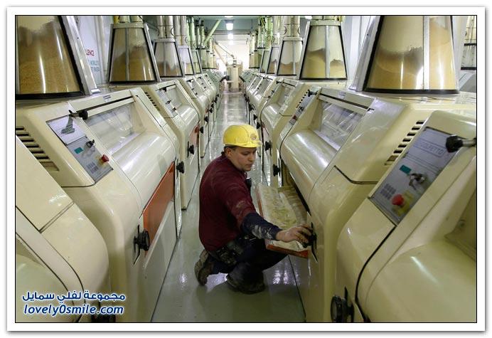 صور العمل والعمال حول العالم